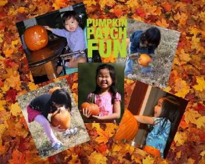 pumpkin-patch-fun-with-lee-loo